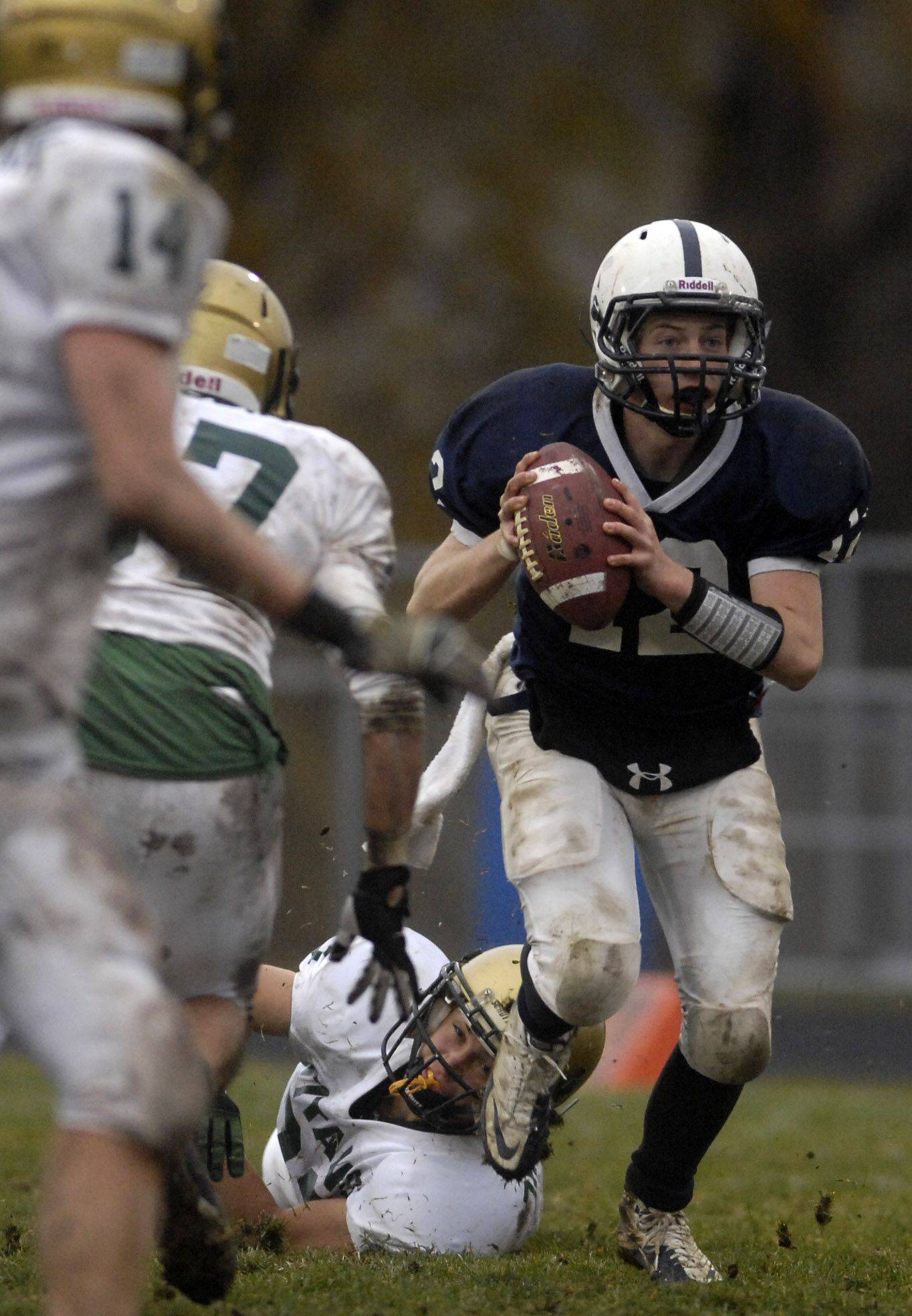 Cary-Grove quarterback Corey Laktas avoids the Rockford Boylan rush before taking off during Saturday's playoff game in Cary.