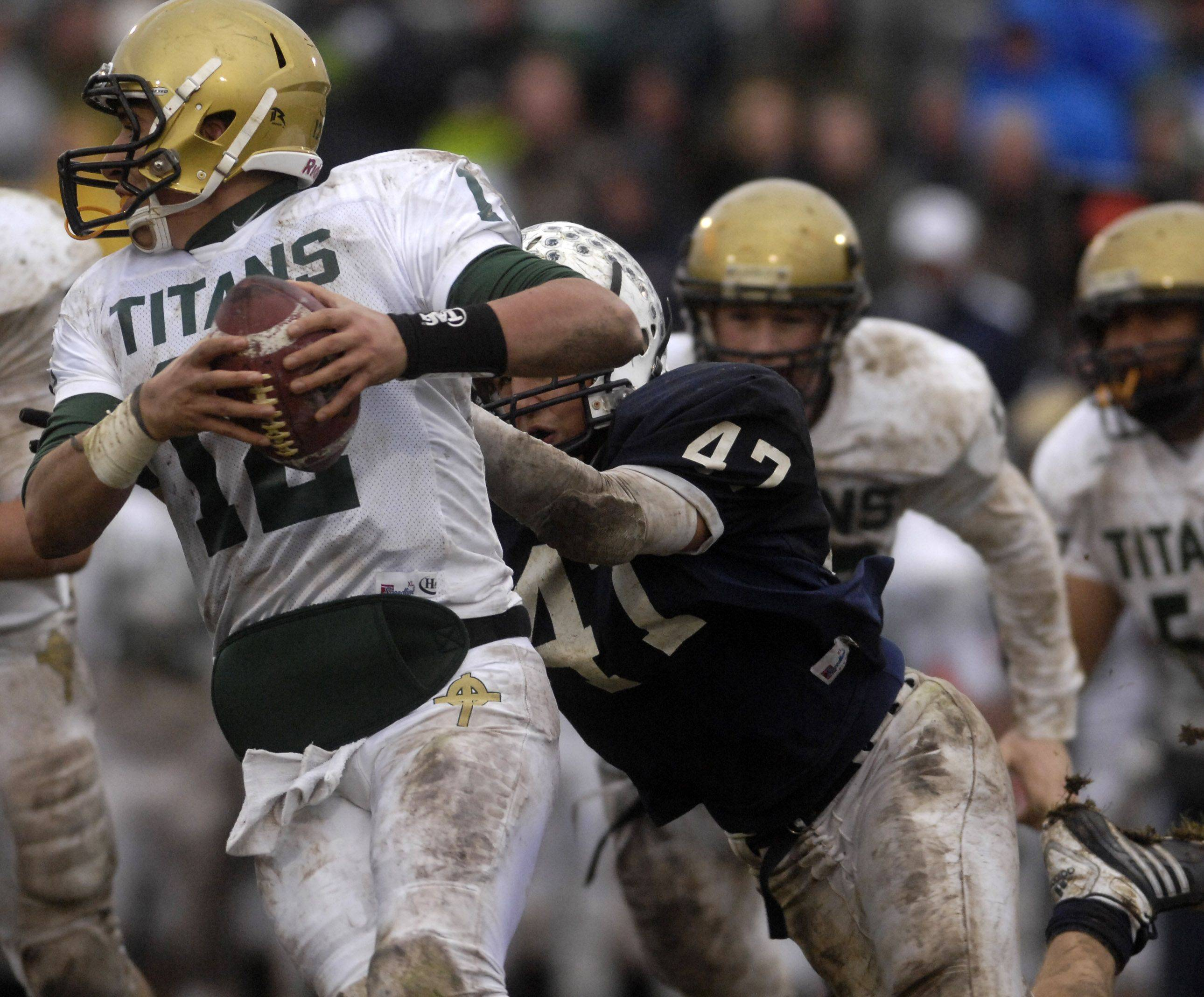 Cary-Grove's Max Kersten sacks Rockford Boylan quarterback Frank Cimino during Saturday's playoff game in Cary.