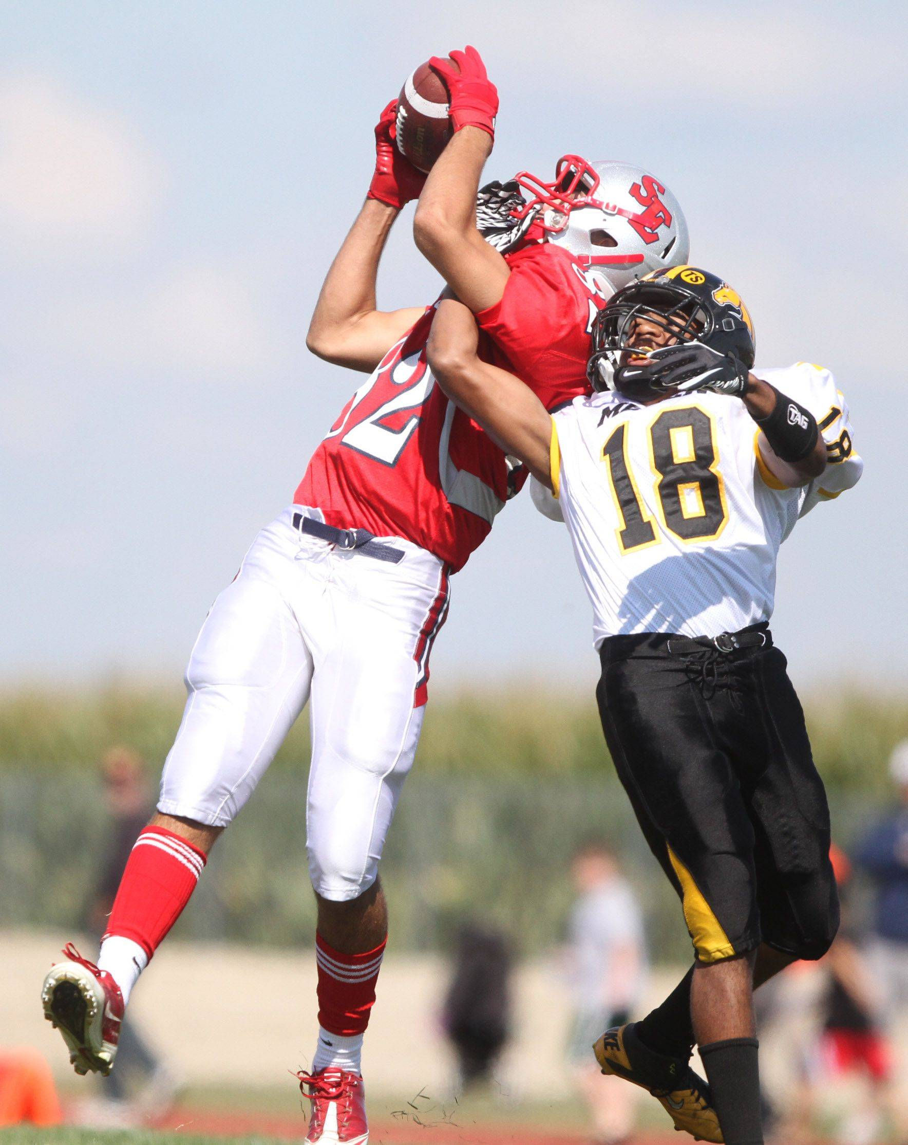 South Elgin's Joe Crivolie pulls in a pass against Metea Valley defender Preston Mitchell.