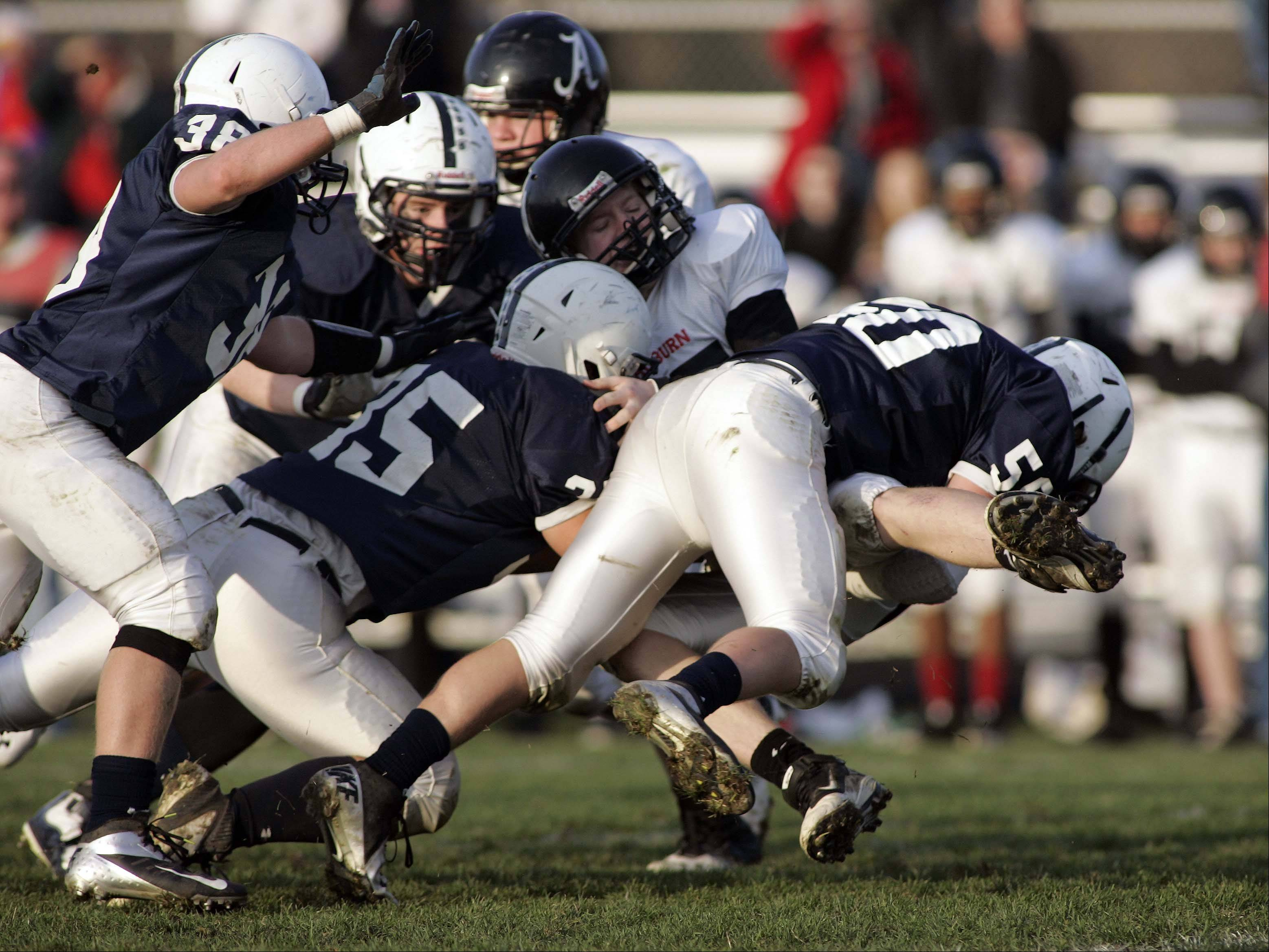 A host of Cary-Grove plaers bring down the Rockford Auburn quarter back during Rockford Auburn at Cary-Grove in IHSA Class 6A playoff Football Saturday October 27, 2012.