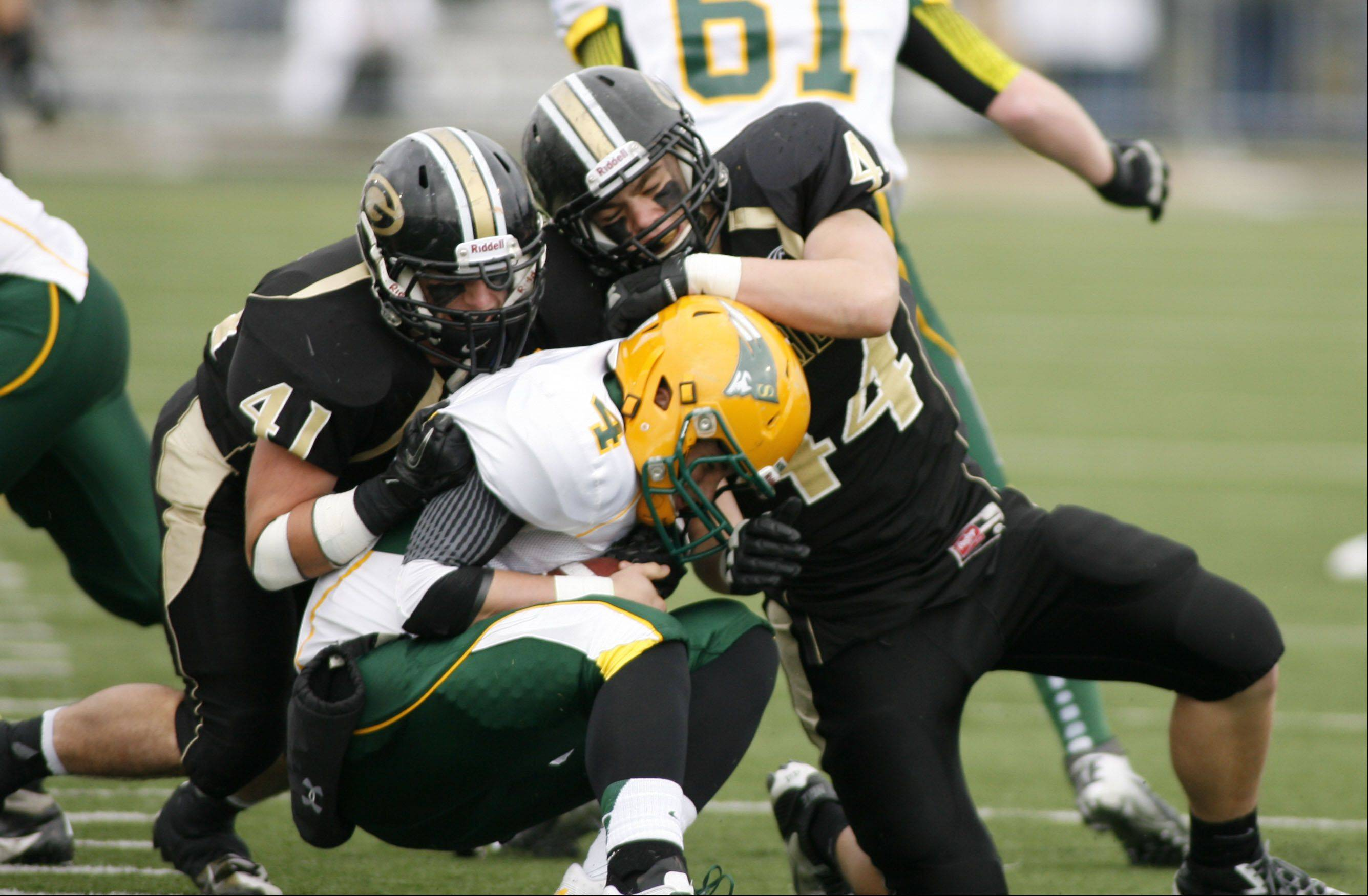 Glenbard North's Dominic Fornino (41) and Andrew Mulshine (44), sack Stevenson's Willie Bourbon (4), during second round Class 8A football playoffs.