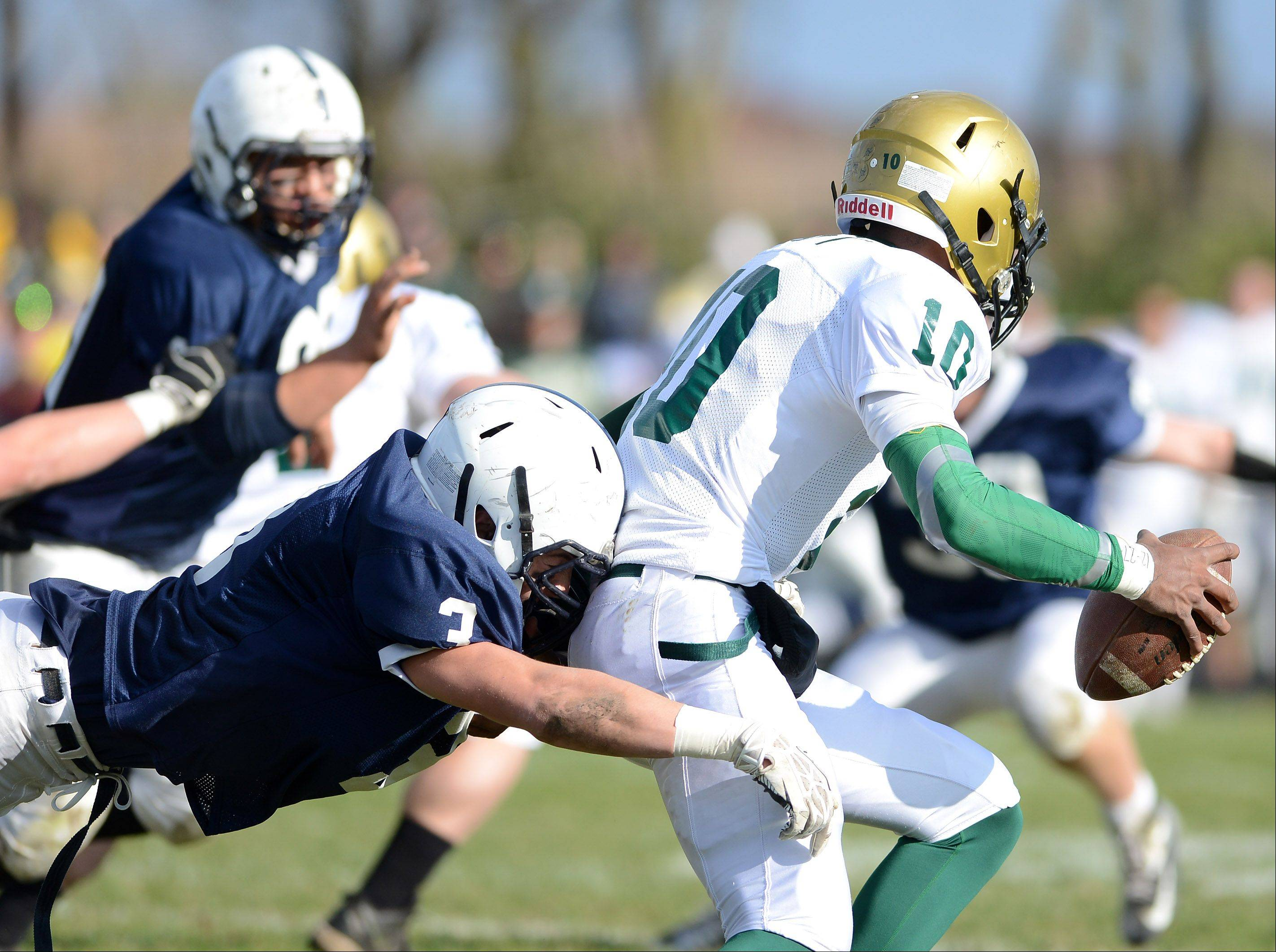 Cary-Grove's Joey Maxwell (3) sacks Boylan Catholic quarterback Demry Croft (10) during Saturday's game in Cary.