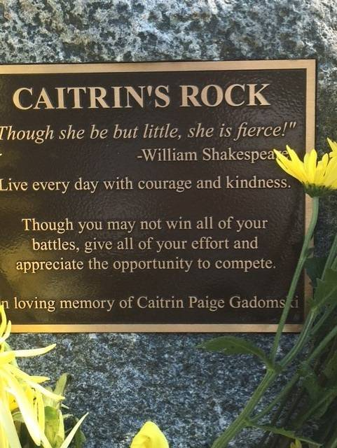 This rock in Newton Park in Glen Ellyn honors Caitrin Paige Gadomski.