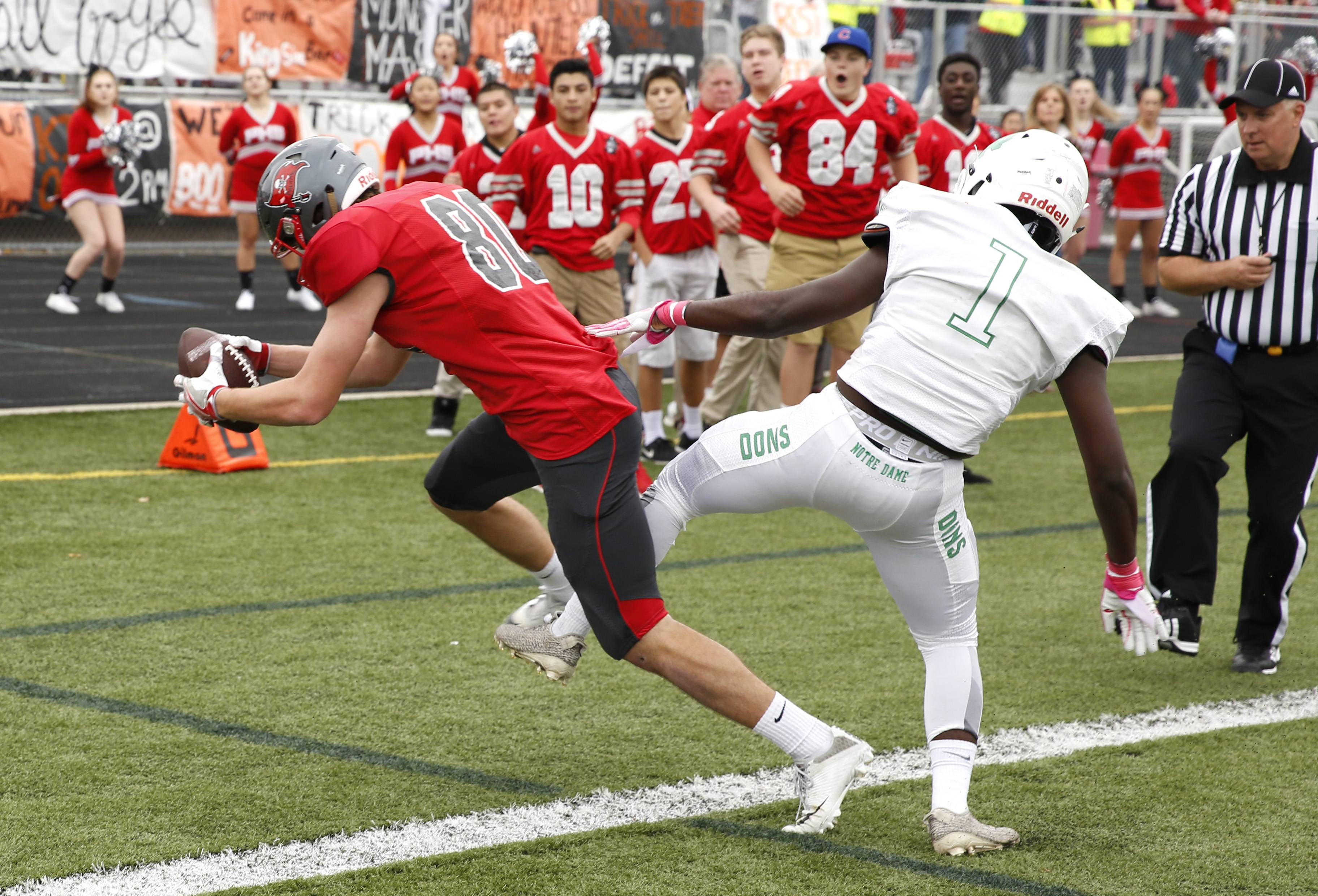 Palatine's DJ Angelaccio (10) gets both feet in bounds as he scores the Pirates' first touchdown against Notre Dame during the first round of the Class 8A football playoffs in Palatine.