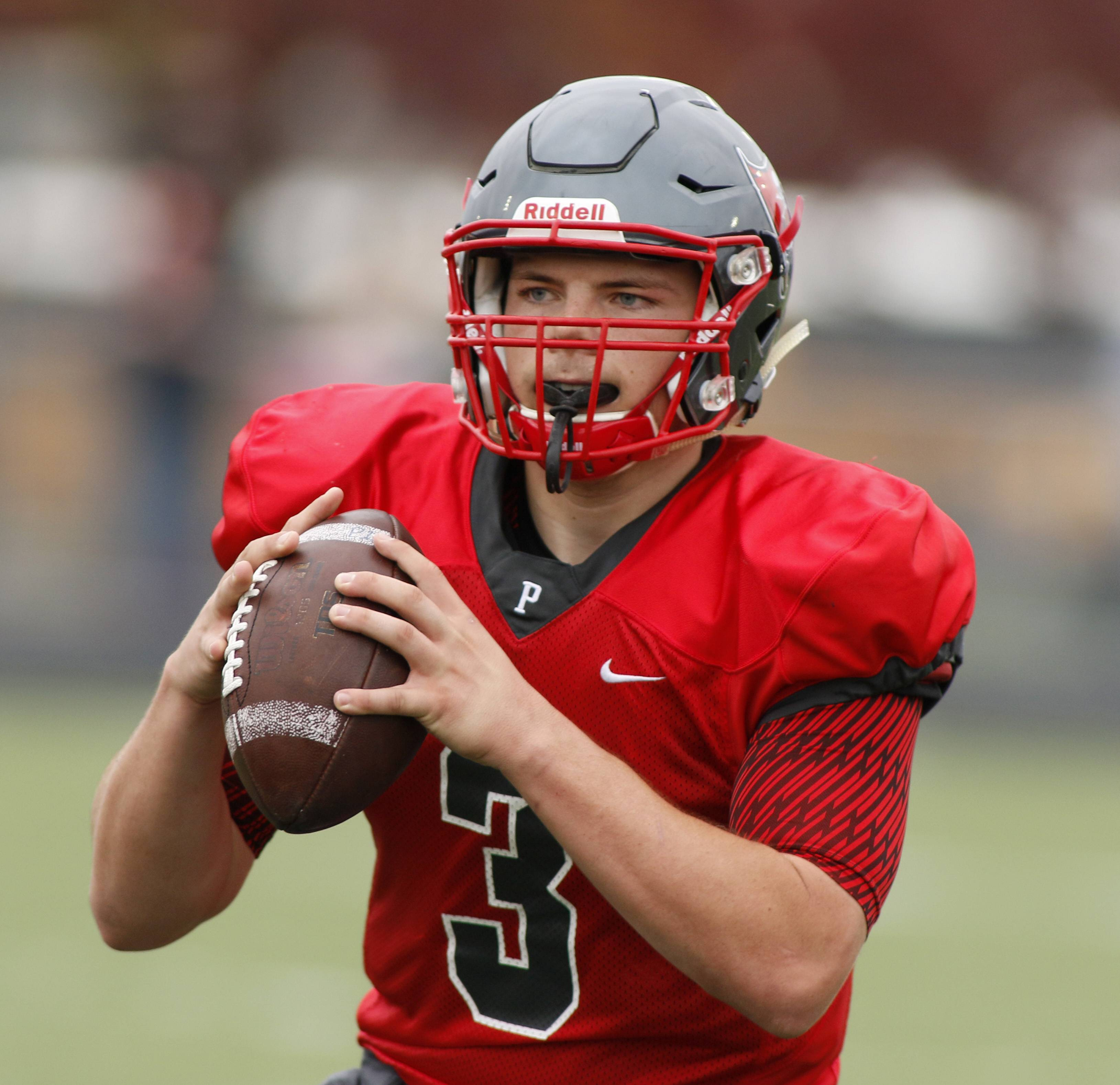 Palatine senior quarterback Zach Oles looks downfield against Notre Dame during the first round of Class 8A football playoffs in Palatine. On Monday, Oles announced he'd play his college football at Butler University.