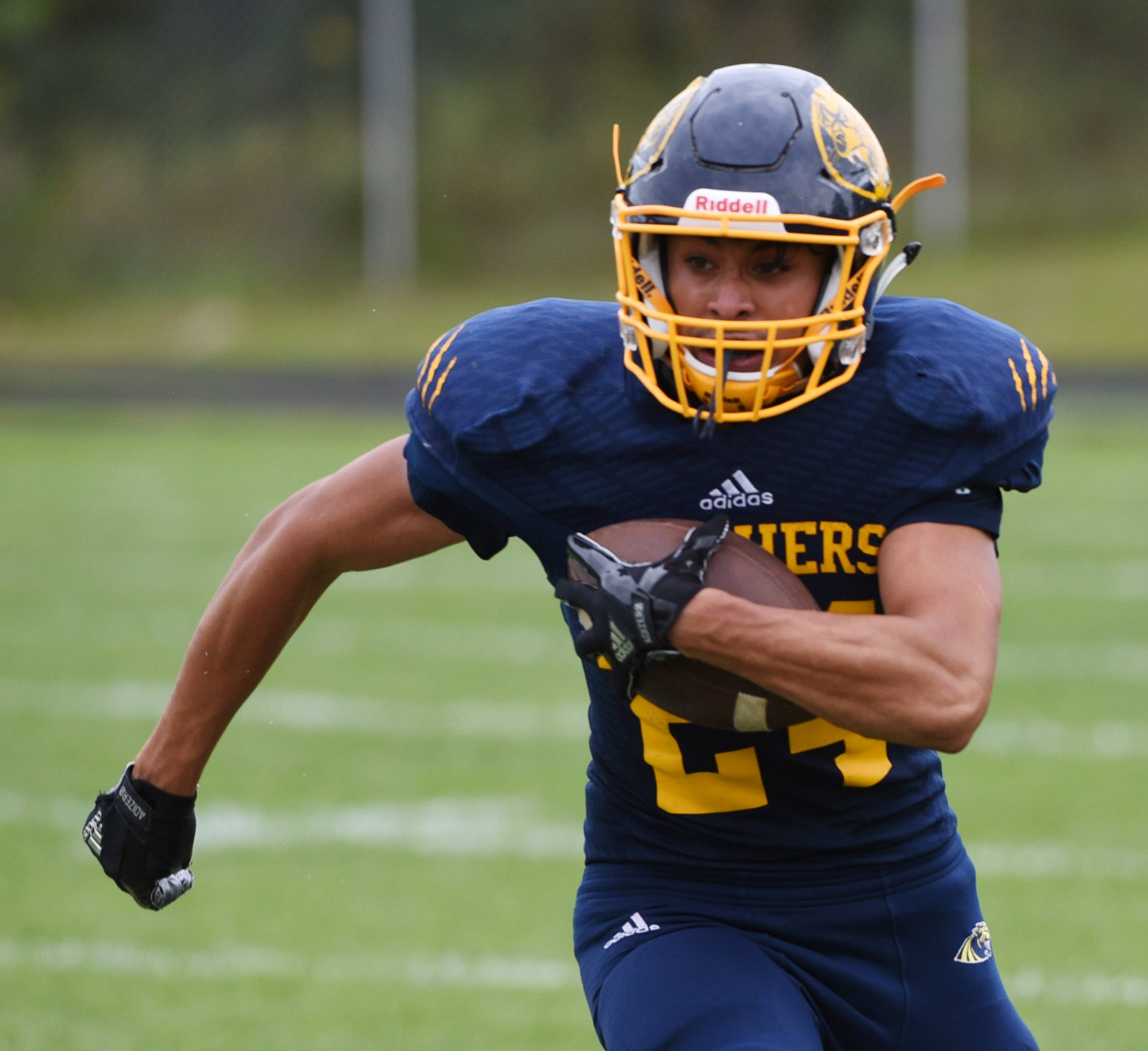 Round Lake's Julio Pacheco carries the ball during the second quarter of Saturday's game against Amundsen.